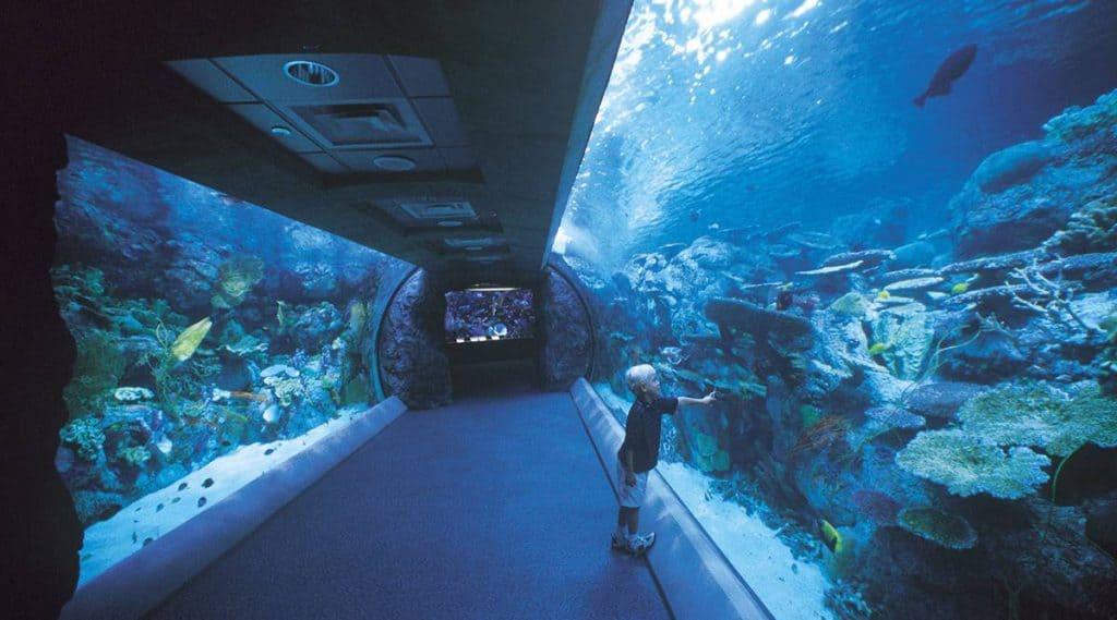 Thủy cung Thái Bình Dương